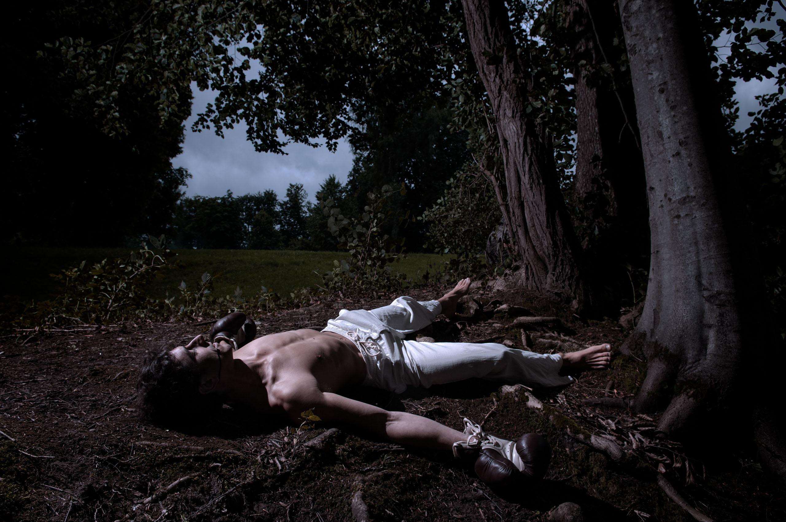 dead boxer